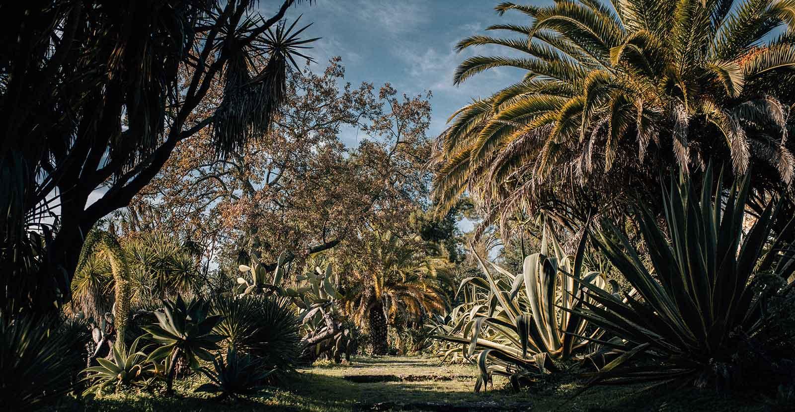 Lisbonne Ame Secrets Quels Jardins Arpenter